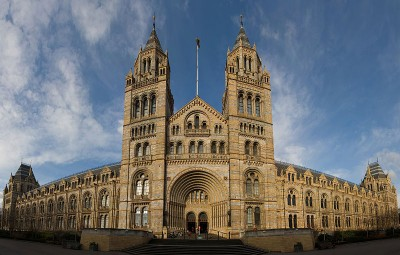 C: The Natural History Museum, London (Image: Photo by David Iliff. License: CC-BY-SA 3.0. WikiCommons)The Natural History Museum, London (Image: By David Iliff via Wikimedia Commons)