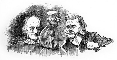 "The professional rivalry between Thomas Huxley and Richard Owen was so well known during their time that the writer Charles Kingsley made reference to it in his classic children's book The Water Babies, published in 1863. In this illustration from the 1885 edition, drawn by Linley Sambourne, we see Richard Owen (left) and Thomas Huxley examining a water-baby: ""But they would have put it [the water baby] into spirits, or into the Illustrated News, or perhaps cut it into halves, poor dear little thing, and sent one to Professor Owen, and one to Professor Huxley, to see what they would each say about it."" (Kingsley, 1889, p.69) (Image by Linley Sambourne via Wikimedia Commons)"