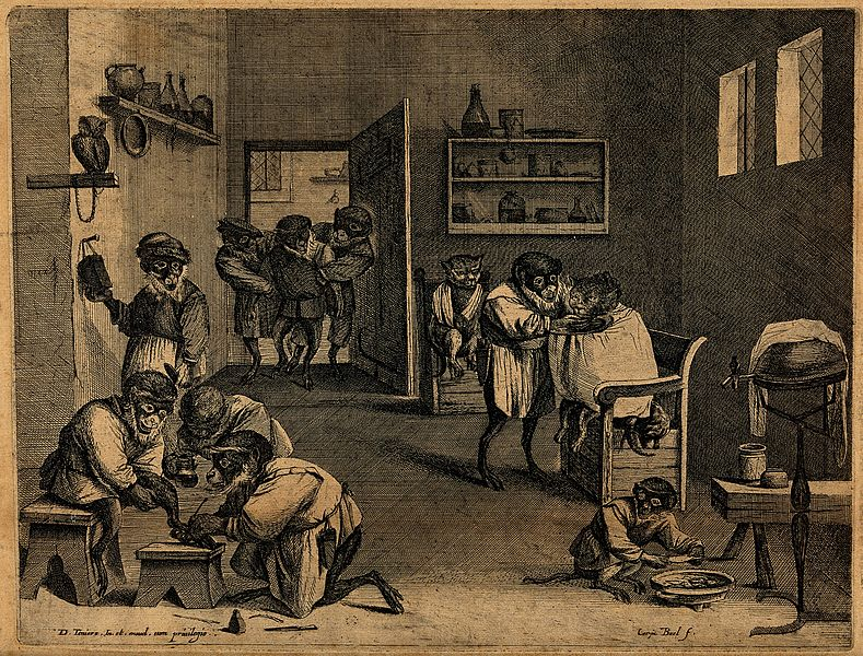 Monkey Business in Old Holland - an engraving by Coryn Boel (1620-1688) after David Teniers (1610-1690). It depicts monkeys caring for patients in a barber-surgeon's shop (Image: Wellcome Library, London/Wikimedia Commons)