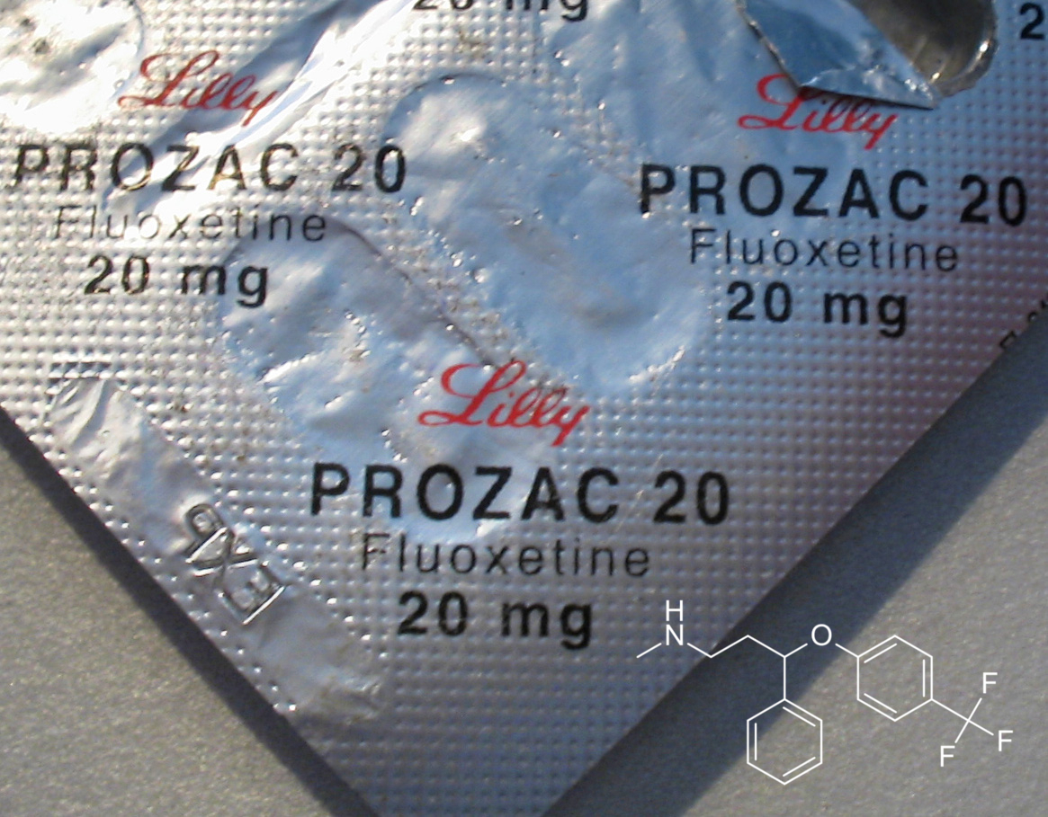 The antidepressant Fluoxetine, also known as 'Prozac' act through serotonin neural circuits to produce an increase of dopamine in the brain.  The mechanism by which these drugs act is still poorly understood.  Prozac helps to relieve the feelings of anxiety and sadness in patients suffering from depression.  However it can also inhibit the experience of other, more desirable emotions (Images: Wikimedia Commons)